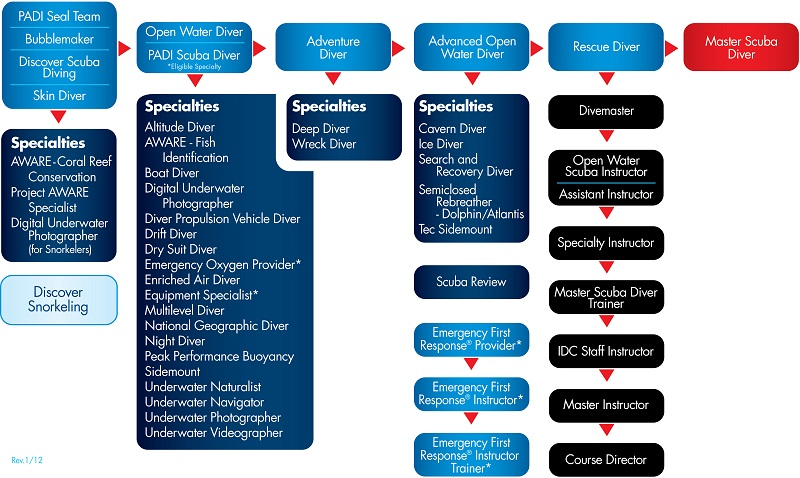 PADI Dive Courses Diagram
