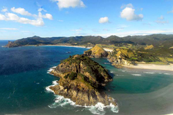 Pitokuku Island, Great Barrier Island, Auckland.