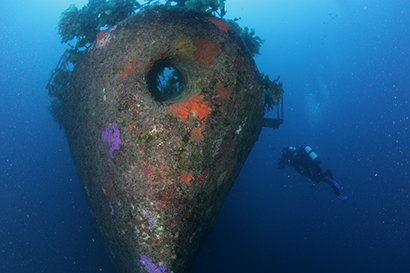 Diver swimming next to wreck